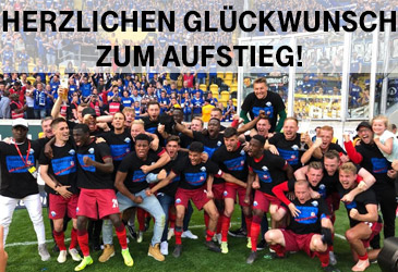 Der SC Paderborn ist wieder erstklassig!